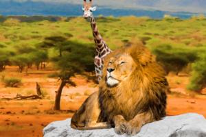 Король Лев в Пятерочке